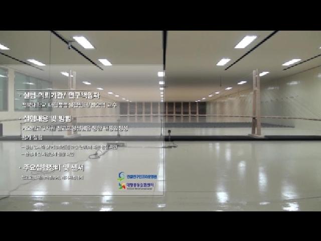 Cao Lanh Bridge Wind Tunnel Test